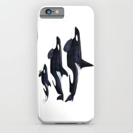 Orca (Orcinus orca) iPhone Case