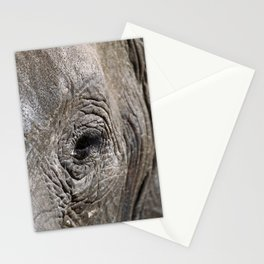 Eye of the elephant, Africa wildlife Stationery Cards