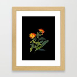 Calendula Officinalis Mary Delany Floral Paper Collage Delicate Vintage Flowers Framed Art Print