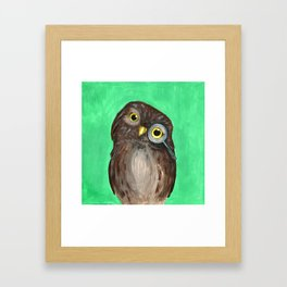 Curios Owl from Animal Society Framed Art Print