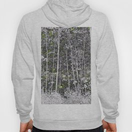 125 - White Forest Hoody