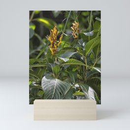 Yellow flower in the rain forest Mini Art Print
