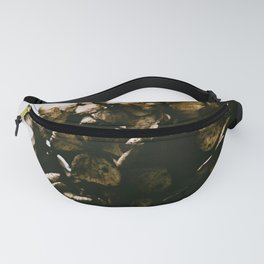 Dried Fanny Pack