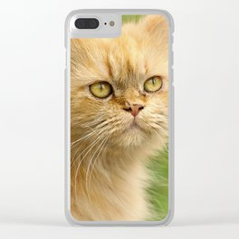 Cat Clear iPhone Case