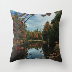 New York Fall Throw Pillow