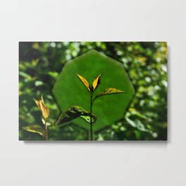 Nature Background for Logo Metal Print