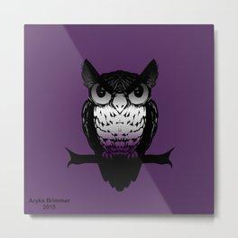 Ace Owl Metal Print