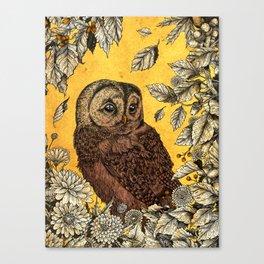 Tawny Owl Yellow Canvas Print