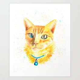 Pony the cat Art Print