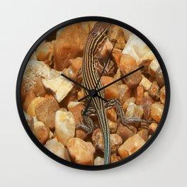 OBX lizard Wall Clock