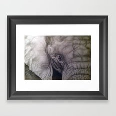 Up close & personal Framed Art Print