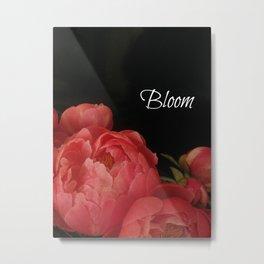 Bloom - Peonies on Black  Metal Print