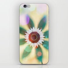 Whirly iPhone & iPod Skin