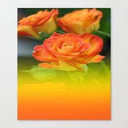 YELLOW ROSES WITH ORANGE TIPS Canvas Print