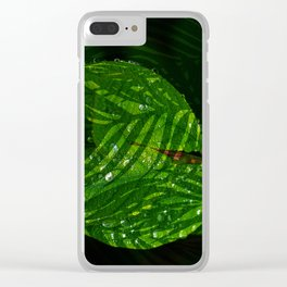 Leaves V2WL Clear iPhone Case