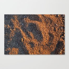 Sand at the sunset Canvas Print