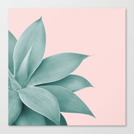 Agave Finesse #3 #tropical #decor #art #society6 Canvas Print