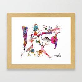 Funky Wondering Birds Framed Art Print