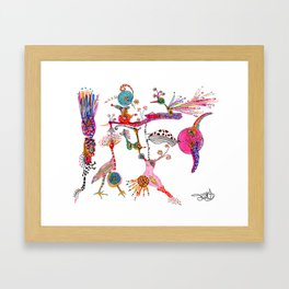 Funky Wondering Birds Framed Art Print