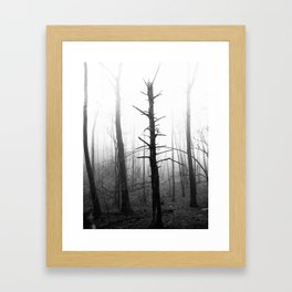 Fogwood Framed Art Print