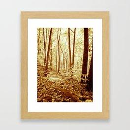 Deep in the Woods. Framed Art Print
