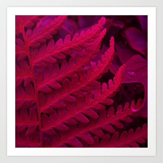 red fern abstract II Art Print