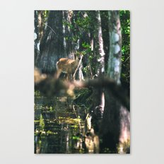 Forest Fawn Canvas Print