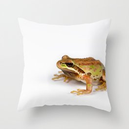 Green and brown frog on white background Throw Pillow