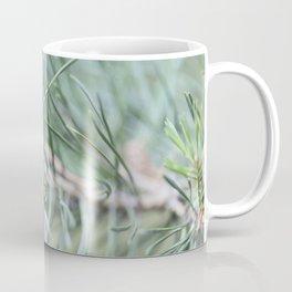 Pine Cone 1 Coffee Mug