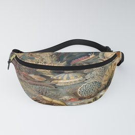 Ocean Life by James M Sommerville 1859 - Reproduction from original under CC0 Fanny Pack