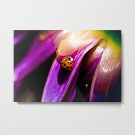Lady Bug on Flower Metal Print