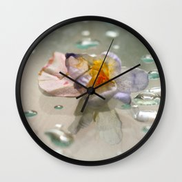 miss clapham's wild crocus Wall Clock