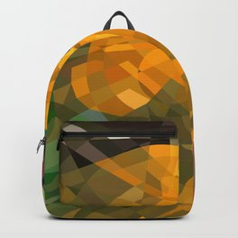 insanity Backpack
