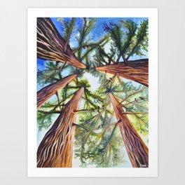 Birdsong Above Art Print