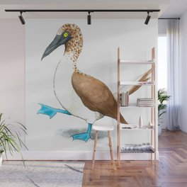 Blue Footed Booby Wall Mural