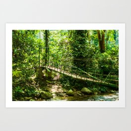 Puente en Choroní, Venezuela Art Print