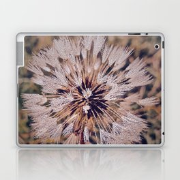 Dew On Dandelion Laptop & iPad Skin