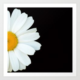 Hello Daisy - White Flower Black Background #decor #society6 #buyart Kunstdrucke