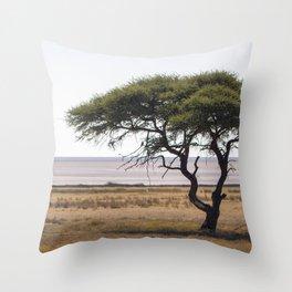 Namibia Landscape Throw Pillow