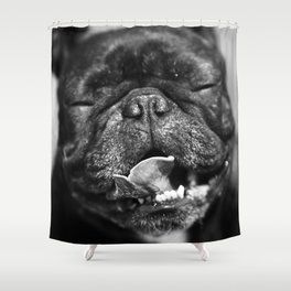 French Bulldog Shower Curtain