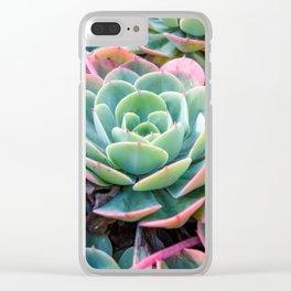 Succulent Garden Vibrant Pastel Clear iPhone Case