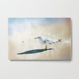 One Lone Seagull Metal Print