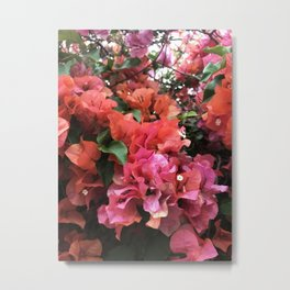 Los Angeles Summer - Pink Metal Print