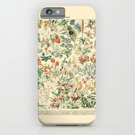Flower Diagram // Fleurs V by Adolphe Millot 19th Century French Science Textbook Artwork iPhone Case