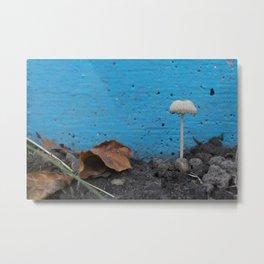 Urban Mushroom Metal Print