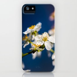 Beautiful White Jasmine Flowers With Green Leaves Against A Blue Background iPhone Case