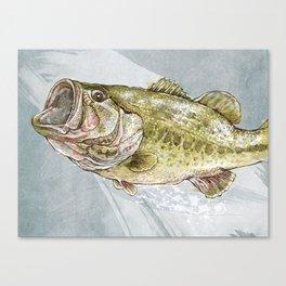Magnificent Largemouth Bass Canvas Print