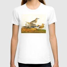 Black-bellied Plover Bird T-shirt