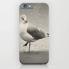Beach Bird iPhone 6s Slim Case