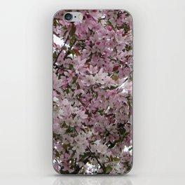 Spring has sprung! iPhone Skin